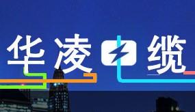 山东华凌电缆有限公司